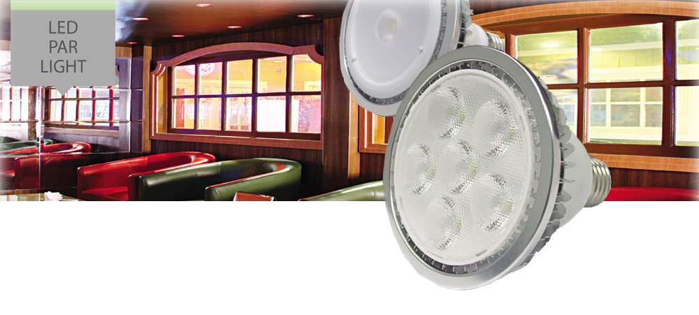 Primalux LED Par Light
